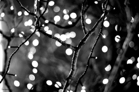28487-Black-And-White-Bokeh